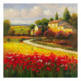 A Tuscan Summer Reproduction procédé giclée par Ben Harris