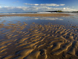 View across Embleton Bay at Low Tide Towards the Ruins of Dunstanburgh Castle, England Photographic Print by Lee Frost