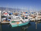 Fishing Boats, Santa Barbara Harbor, California, United States of America, North America Photographic Print by Richard Cummins