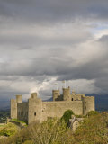 Harlech Castle, UNESCO World Heritage Site, Gwynedd, Wales, United Kingdom, Europe Photographic Print by John Woodworth