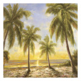 Caribbean Waters Giclee Print by Paulsen