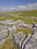 Limestone Pavement and Dry Stone Wall Above Settle, Yorkshire Dales National Park, England Photographic Print by Neale Clark