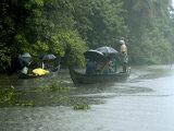 Life During the Monsoon Rains, Kerala, India Photographic Print by Balan Madhavan