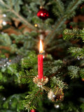 Christmas Tree, Haute Savoie, France, Europe Photographic Print by  Godong