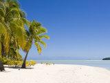 Aitutaki, Cook Islands, South Pacific, Pacific Photographic Print by Michael DeFreitas