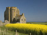 Abandoned Castle in a Field of Rapeseed, Near Banff, Scotland, United Kingdom, Europe Photographic Print by Richard Maschmeyer