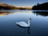 Grasmere, Near Ambleside, Lake District National Park, Cumbria, England, UK Photographic Print by Lee Frost