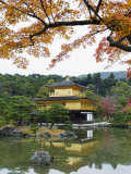 Autumn Colour Leaves, Golden Temple, Kinkaku Ji (Kinkakuji), Dating from 1397, Kyoto, Japan, Asia Photographic Print by Christian Kober