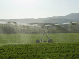 Irrigation in Countryside Near San Quirico D'Orcia, Siena, Tuscany, Italy, Europe Photographic Print by Nico Tondini