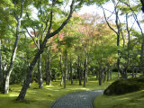 Moss Garden, Hakone Museum of Art, Koen-Kami, Gora, Hakone, West of Tokyo, Honshu, Japan Photographic Print by Tony Waltham