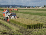 Rice Harvest with Mini-Combine-Harvester, Furano Valley, Central Hokkaido, Japan, Asia Photographic Print by Tony Waltham