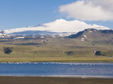 Mountain Landscape with Body of Water and Flock of Birds, Snaefellsjokull National Park, Iceland Photographic Print by Michael Runkel