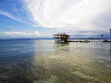 Carenero Island (Isla Carenero), Bocas Del Toro Province, Panama, Central America Photographic Print by Jane Sweeney