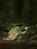 Waterfall in the Fir Wood, c.1828 Giclee Print by Caspar David Friedrich