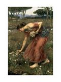 Narcissus, 1912 ジクレープリント : ジョン・ウイリアム・ウォーターハウス