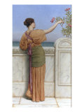 A Choice Blossom, 1918 Prints by John William Godward