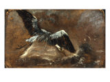 Study of a Heron (Verso) Posters by John Constable