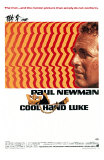 Cool Hand Luke, 1967 Poster