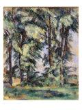 Grands Arbres au Jas de Bouffan, c.1890 Posters by Paul Cézanne
