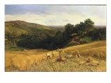 A Surrey Cornfield, 1860 Giclee Print by George Vicat Cole