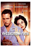 Cat On a Hot Tin Roof, Greek Movie Poster, 1958 Print