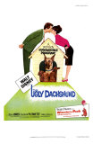 The Ugly Dachshund, 1966 Poster