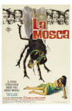 The Fly, Spanish Movie Poster, 1958 Poster