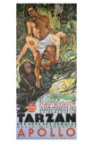 Tarzan The Ape Man, German Movie Poster, 1932 Posters