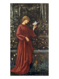 The Princess Sabra Prints by Edward Burne-Jones