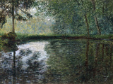 Coin D'Etang A Montgeron, 1876 Print by Claude Monet