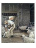 Sheepshearing Print by Alexander Mann