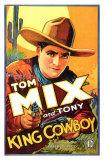 King Cowboy, 1928 Posters