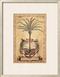 Sunset Palm Prints by Elizabeth Jardine