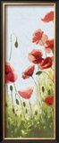 Mountain Poppies II Prints by Shirley Novak