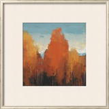 The Maples II Prints by Peter Colbert
