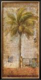 Palm Tree II Prints by  Kemp