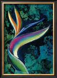 Bird of Paradise Framed Giclee Print by Marcella Rose