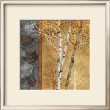 Birch Tree in Autumn I Posters by Conrad Knutsen