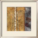 Birch Tree in Autumn II Prints by Conrad Knutsen