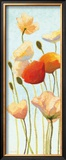 Just Being Poppies II Posters by Shirley Novak