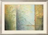 Ferns and Grasses Prints by Don Li-Leger