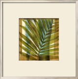 Seaside Palms II Art by Jennifer Goldberger