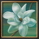 Star Magnolia Poster by Vivien Rhyan