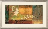 Shambala II Prints by Chris Donovan