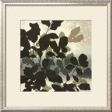 Autumn Silhouette I Prints by Franz Heigl