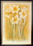 Narcisses I Poster by Laurence David