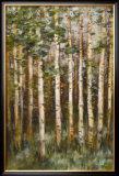 Aspen Beauty III Prints by Scott Lee