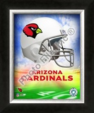 2009 Arizona Cardinals Team Logo Framed Photographic Print