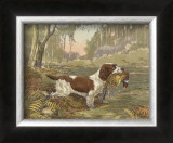 Springer and Pheasant Prints by Reuben Ward Binks