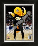 Georgia Tech Yellowjacket Framed Photographic Print